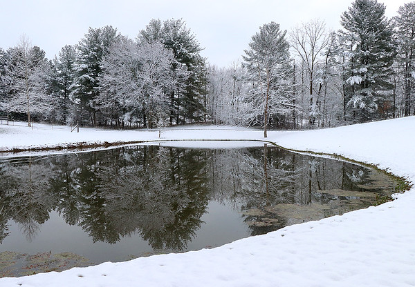 Snow-covered trees reflected in a friends pond.<br /> <br /> Photographer's Name: Jerry Byard<br /> Photographer's City and State: Anderson, Ind.