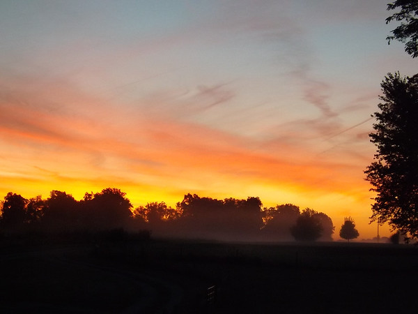 """""""Morning Fog:"""" Photo taken at my farm in Richland Township.<br /> <br /> Photographer's Name: J.R. Rosencrans<br /> Photographer's City and State: Alexandria, Ind."""