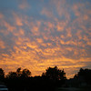 Summer sunset outside my back door.<br /> <br /> Photographer's Name: Debbie Condon<br /> Photographer's City and State: Anderson, Ind.