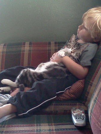 Best buds Tyler and Ziggy watching cartoons together.<br /> <br /> Photographer's Name: Tamara Baker<br /> Photographer's City and State: Anderson, Ind.