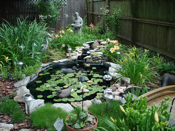 A lily pond in the garden of Joyce Fischer, Anderson.<br /> <br /> Photographer's Name: Joyce Fischer<br /> Photographer's City and State: Anderson, Ind.