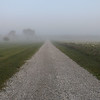 The country lane and country fog at my farm in Richland Township.<br /> <br /> Photographer's Name: J.R.  Rosencrans<br /> Photographer's City and State: Alexandria, Ind.