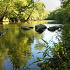 This is a nice serene view of White River along Trail 5 at Mounds Park, especially since the flooded conditions have subsided.<br /> <br /> Photographer's Name: Jerry Byard<br /> Photographer's City and State: Anderson, Ind.