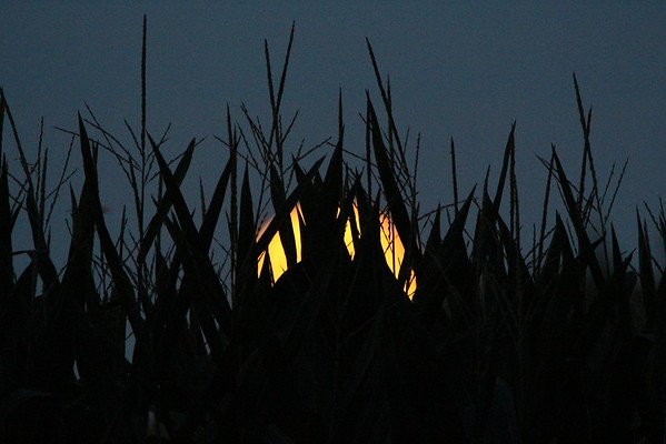 """""""Blue Moon"""" rising.<br /> <br /> Photographer's Name: Brian Fox<br /> Photographer's City and State: Anderson, Ind."""