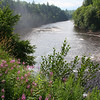 This is a view of the Tahquamenon River after flowing over the Upper Falls.<br /> <br /> Photographer's Name: Jerry Byard<br /> Photographer's City and State: Anderson, Ind.