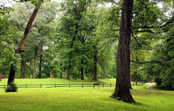 After a recent rain this is the Great Mound at Mounds Park. <br /> <br /> Photographer's Name: Jerry Byard<br /> Photographer's City and State: Anderson, Ind.