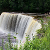 I visited Tahquamenon Falls State Park recently.<br /> <br /> Photographer's Name: Jerry Byard<br /> Photographer's City and State: Anderson, Ind.