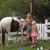 Learning how to wash a horse at my farm in Richland Township.<br /> <br /> Photographer's Name: J.R. Rosencrans<br /> Photographer's City and State: Alexandria, Ind.