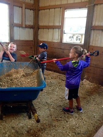 Youngsters learning about barn chores in Richland Township.<br /> <br /> Photographer's Name: J.R. Rosencrans<br /> Photographer's City and State: Alexandria, Ind.
