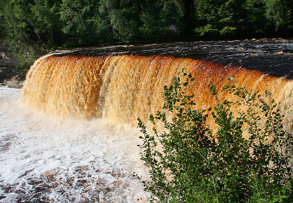 Tahquamenon Falls in Upper Michigan.<br /> <br /> Photographer's Name: Jerry Byard<br /> Photographer's City and State: Anderson, Ind.