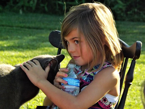 Kids and cats: Photo taken at Moon Rise Farm.<br /> <br /> Photographer's Name: J.R. Rosencrans<br /> Photographer's City and State: Alexandria, Ind.