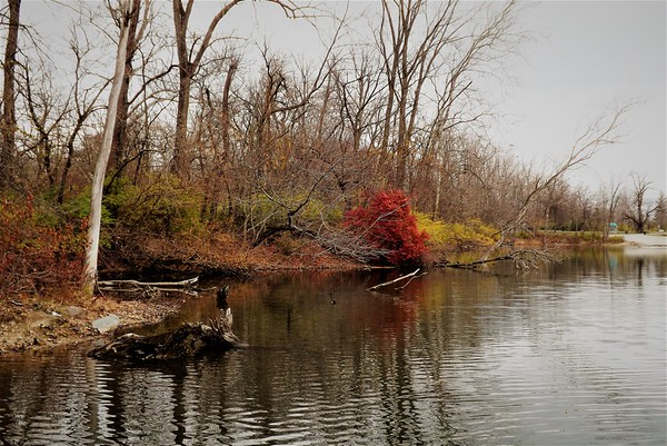 Shadyside Lake in December.<br /> <br /> Photographer's Name: J.R. Rosencrans<br /> Photographer's City and State: Alexandria, Ind.
