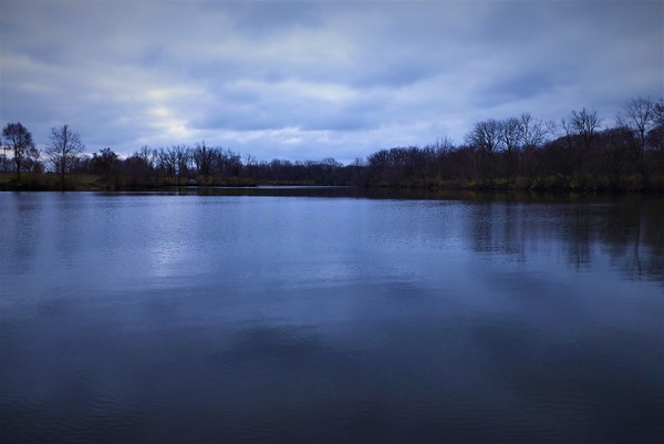 """""""Blue Christmas"""" at Shadyside Lake.<br /> <br /> Photographer's Name: J.R. Rosencrans<br /> Photographer's City and State: Alexandria, Ind."""