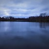 """Blue Christmas"" at Shadyside Lake.<br /> <br /> Photographer's Name: J.R. Rosencrans<br /> Photographer's City and State: Alexandria, Ind."