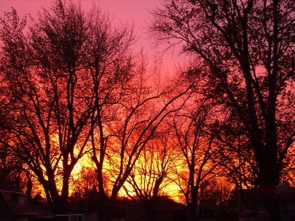 Photographer's Name: Wynn Levi<br /> Photographer's City and State: Alexandria, Ind.