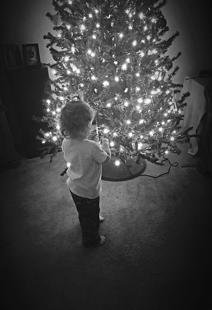 Mayah Norris daughter of Zac Norris and Haley Hart putting ornaments on the Christmas tree.<br /> <br /> Photographer's Name: Melea Hart<br /> Photographer's City and State: Alexandria, Ind.