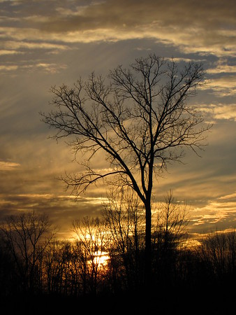 A late autumn sunset.<br /> <br /> Photographer's Name: Harry Van Noy<br /> Photographer's City and State: Lafayette Township, Ind.