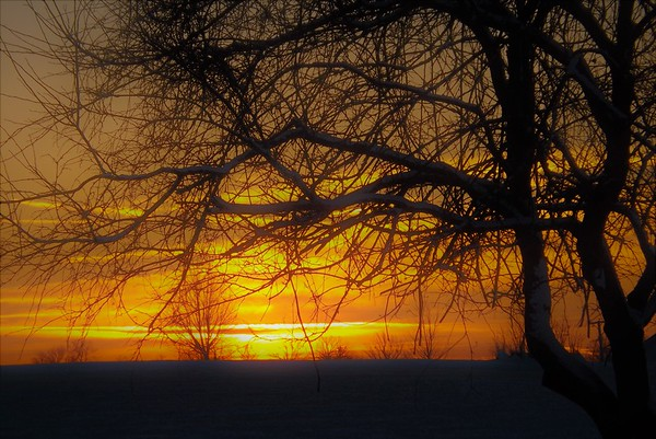December sunrise in Richland Township.<br /> <br /> Photographer's Name: J.R. Rosencrans<br /> Photographer's City and State: Alexandria, Ind.