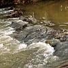 Pioneer Dam on Killbuck Creek.<br /> <br /> Photographer's Name: J.R. Rosencrans<br /> Photographer's City and State: Alexandria, Ind.