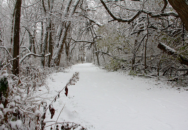 Snowy Trail 5 along the river at Mounds Park.<br /> <br /> Photographer's Name: Jerry Byard<br /> Photographer's City and State: Anderson, Ind.