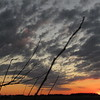 A late November twilight sky, seen from Madison County.<br /> <br /> Photographer's Name: Harry Van Noy<br /> Photographer's City and State: Lafayette Township, Ind.