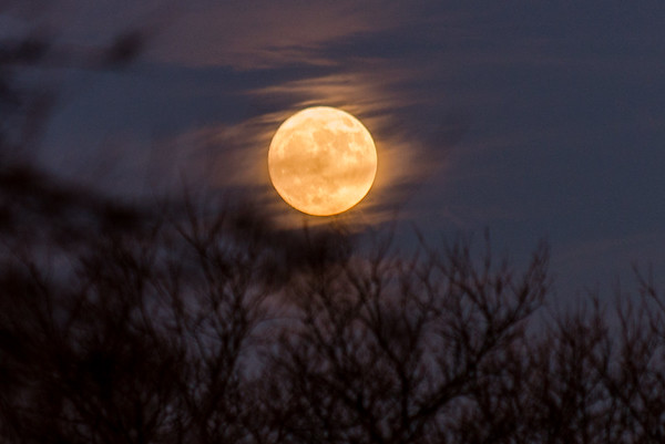 The moon rising last night<br /> <br /> Photographer's Name: Terry Lynn Ayers<br /> Photographer's City and State: Anderson, Ind.