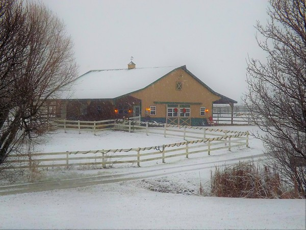 A stable is a special place in December.<br /> <br /> Photographer's Name: J.R. Rosencrans<br /> Photographer's City and State: Alexandria, Ind.