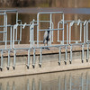 A great blue heron hiding out on the pier at the Activity Center at Shadyside on Dec 1.<br /> <br /> Photographer's Name: Ruby Northcutt<br /> Photographer's City and State: Anderson, Ind.