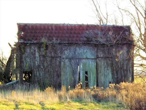 """""""Aging Barn"""" in Richland Township.<br /> <br /> Photographer's Name: J.R. Rosencrans<br /> Photographer's City and State: Alexandria, Ind."""