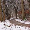 A snowy Trail 5 with new snow at Mounds Park.<br /> <br /> Photographer's Name: Jerry Byard<br /> Photographer's City and State: Anderson, Ind.