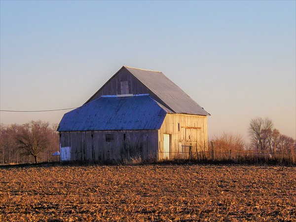 December on the farm in Madison County.<br /> <br /> Photographer's Name: J.R. Rosencrans<br /> Photographer's City and State: Alexandria, Ind.