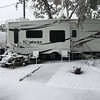 Snowfall in Corpus Christi, Texas.<br /> <br /> Photographer's Name: Debbie Summers<br /> Photographer's City and State: Anderson, Ind.