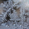Our Arctic cold blast has left my windows with interesting frost patterns.<br /> <br /> Photographer's Name: Jerry Byard<br /> Photographer's City and State: Anderson, Ind.