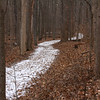 A winding snowy trail in Mounds Park leads hikers through the woods on Trail 3.<br /> <br /> Photographer's Name: Jerry Byard<br /> Photographer's City and State: Anderson, Ind.