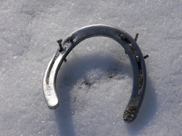 Unlucky horseshoe, taken at my farm in Richland Township.<br /> <br /> Photographer's Name: J.R. Rosencrans<br /> Photographer's City and State: Alexandria, Ind.