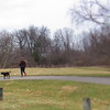 Dog, out for a walk, and a cold February day, at Pulaski Park.<br /> <br /> Photographer's Name: Harry Van Noy<br /> Photographer's City and State: Lafayette Township, Ind.