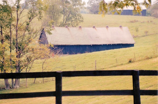 Old barns in rural Kentucky.<br /> <br /> Photographer's Name: Rebecca Reding<br /> Photographer's City and State: Anderson, Ind.