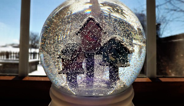 Snow globe fun.<br /> <br /> Photographer's Name: J.R. Rosencrans<br /> Photographer's City and State: Alexandria, Ind.