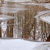 Icy reflections in the woods at Mounds Park along White River.<br /> <br /> Photographer's Name: Jerry Byard<br /> Photographer's City and State: Anderson, Ind.