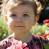 My 3-year-old niece, soon to be 4, picking flowers and posing for the camera.<br /> <br /> Photographer's Name: Nicole Winkler<br /> Photographer's City and State: Anderson, Ind.