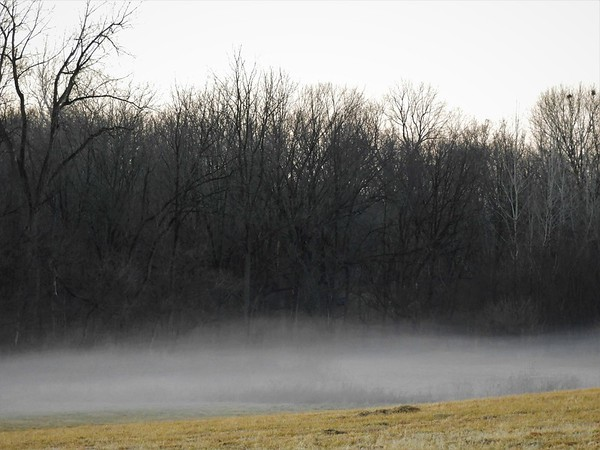 February fog in Richland Township.<br /> <br /> Photographer's Name: J.R. Rosencrans<br /> Photographer's City and State: Alexandria, Ind.
