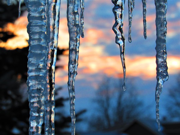 Icicles on a cold January day.<br /> <br /> Photographer's Name: Harry Van Noy<br /> Photographer's City and State: Lafayette Township, Ind.