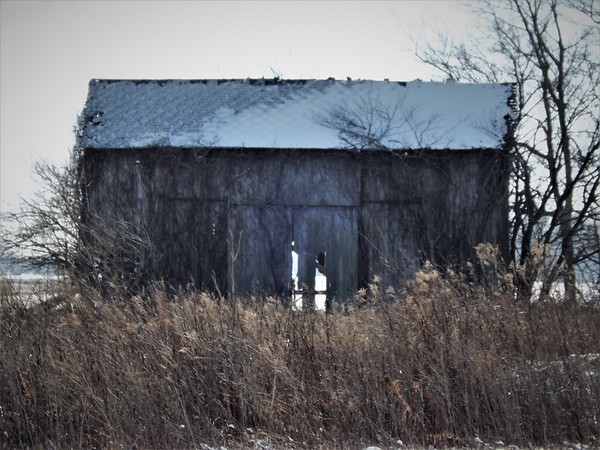 Madison County barns in February.<br /> <br /> Photographer's Name: J.R. Rosencrans<br /> Photographer's City and State: Alexandria, Ind.