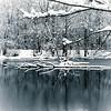 Shadyside Park.<br /> <br /> Photographer's Name: Mary  Clark<br /> Photographer's City and State: Anderson, Ind.