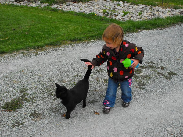 Cats and kids...granddaughter Katie Gray in Richland Township.<br /> <br /> Photographer's Name: J.R. Rosencrans<br /> Photographer's City and State: Alexandria, Ind.