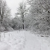 Sunday snow in Richland Township.<br /> <br /> Photographer's Name: J.R. Rosencrans<br /> Photographer's City and State: Alexandria, Ind.