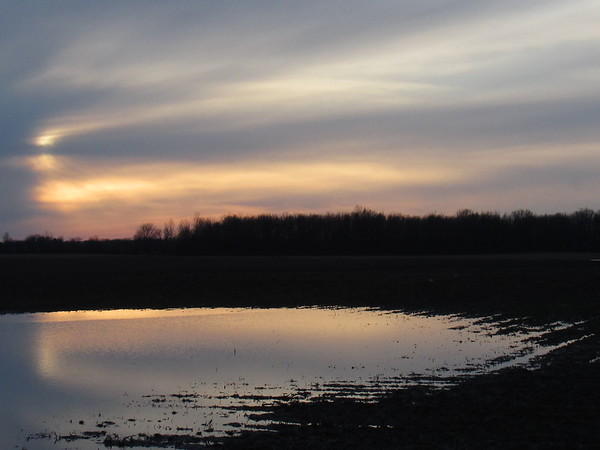 Reflected, setting sun, on a flooded, country field.<br /> <br /> Photographer's Name: Harry Van Noy<br /> Photographer's City and State: Lafayette Township, Ind.