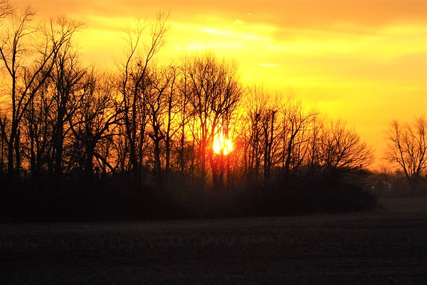 The warmth of the sun in Richland Township.<br /> <br /> Photographer's Name: J.R. Rosencrans<br /> Photographer's City and State: Alexandria, Ind.