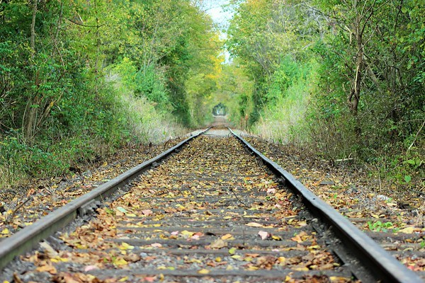 An old railroad track in rural Indiana.<br /> <br /> Photographer's Name: Rebecca Reding<br /> Photographer's City and State: Anderson, Ind.