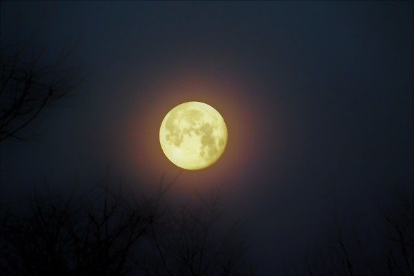 January full moon in Richland Township.<br /> <br /> Photographer's Name: J.R. Rosencrans<br /> Photographer's City and State: Alexandria, Ind.